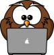Owl Laptop